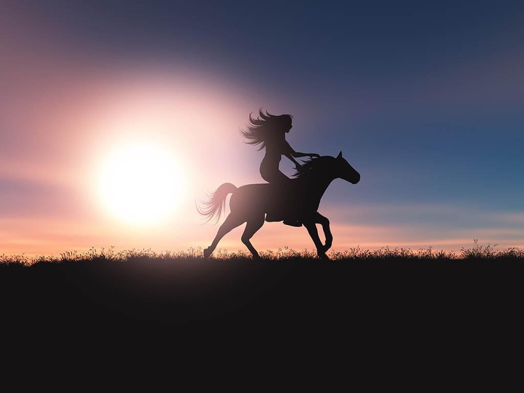מדיטציית הסוס האציל והדוהר